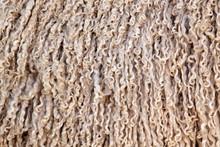Angora Goat Wool Background