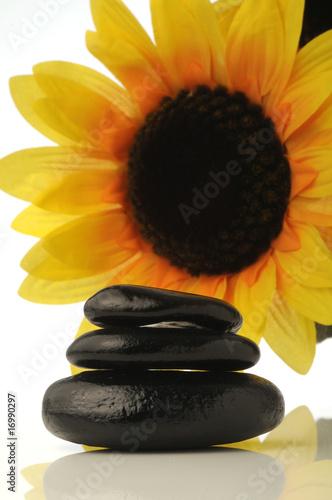 Doppelrollo mit Motiv - Stone therapy (von Comugnero Silvana)