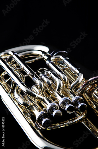 Gold Brass Tuba Euphonium Wallpaper Mural