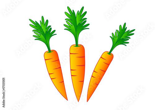 Foto-Kissen - Carrots on a white background (von Anthonycz)