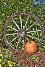 Autumn Wagon Wheel