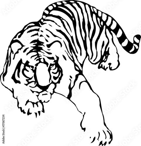 sylwetka-tygrysa