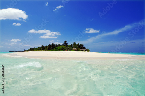 Foto-Leinwand - Island in the Maldives (von Fyle)