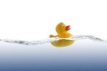 Cute Rubber Duckling