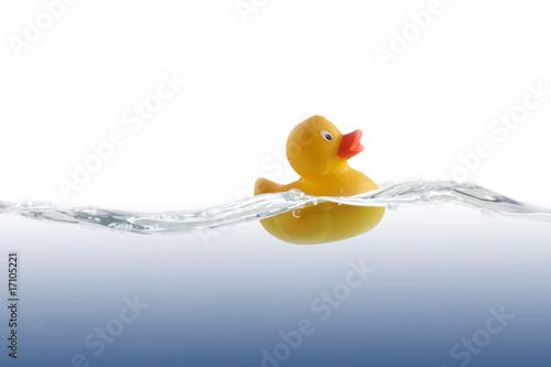 Fotografía  Cute Rubber Duckling