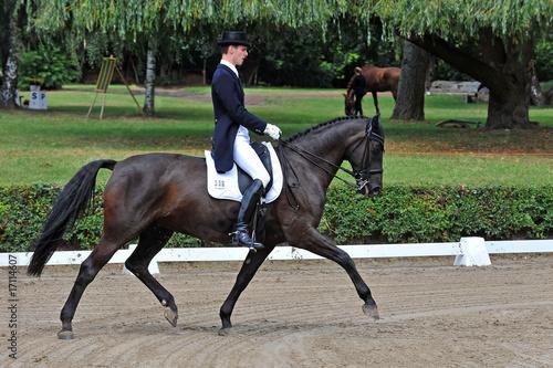 Garden Poster Horseback riding Dressurreiter bei der Prüfung