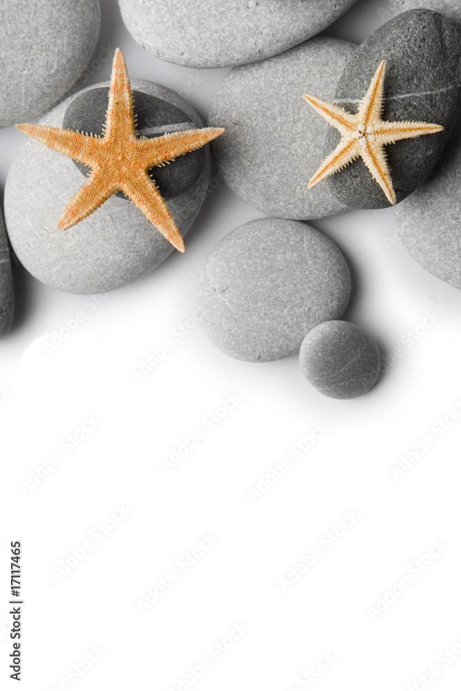 Plissee mit Motiv - Fondo de Piedras y Estrellas de Mar