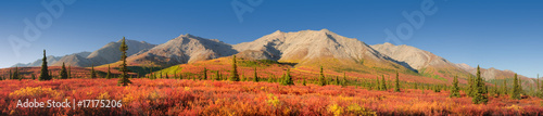 Printed kitchen splashbacks Brick Alaska autumn Tundra Denali National Park