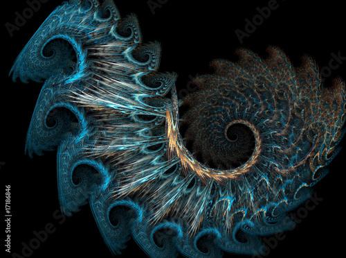 Printed kitchen splashbacks Spiral Peacock