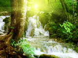 wodospad w głębokim lesie - 17224671