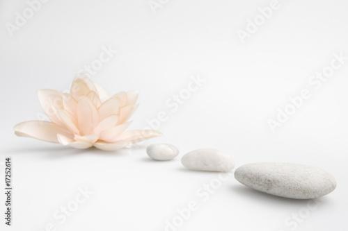 Plissee mit Motiv - wellness still life pebbles and  lily