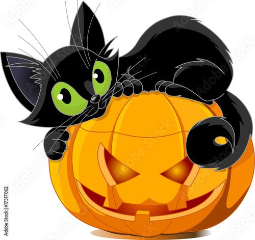 Printed kitchen splashbacks Fairytale World Black cat