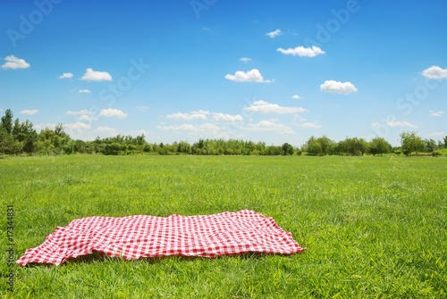 Keuken foto achterwand Picknick picnic cloth on meadow