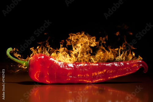 Poster Hot chili peppers red hot chili pepper, very hot.