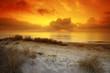 canvas print picture dune et plage de corse Mer Thyrénéenne