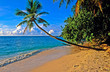 Leinwandbild Motiv Plage de praslin aux Seychelles