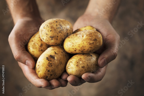 Fotografija Potatoes