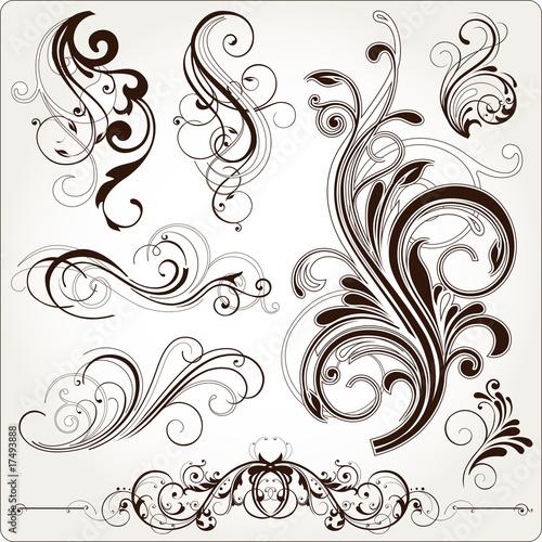 Fotografie, Obraz  floral design elements