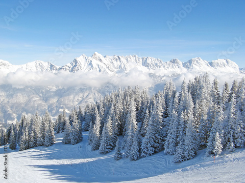 Foto op Canvas Bleke violet Winter in the alps