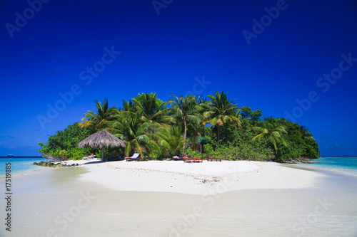 Poster Dark blue Tropical Island Paradise at Maldives