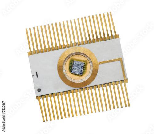 Fotografie, Obraz  microchip