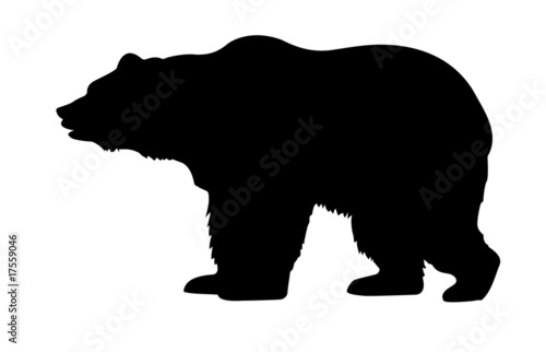 Fotografie, Tablou  silhouette bear isolated on white background