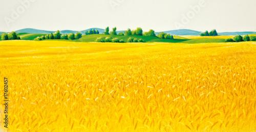 Foto op Aluminium Oranje Landschaft