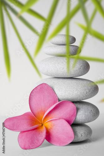 zen-kamienie-z-kwiatem-i-bambusem
