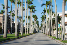 West Palm Beach, Florida, January 2007