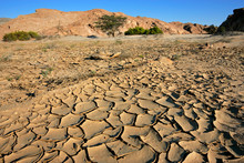 Cracked Mud In A Dry Riverbed,...