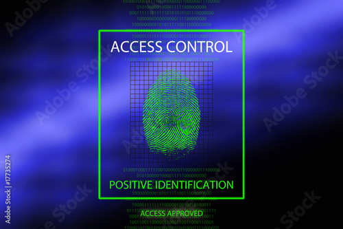 Access approved Canvas Print