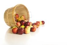Bushel Of Apples On White