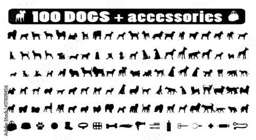 Fényképezés  100 dogs icons and Dog accessories,vector pet emblem, dogs staff