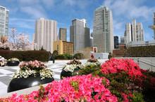 Yerba Buena Gardens, Downtown San Francisco