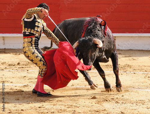 Matador with Sword