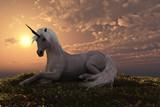 Fototapeta Horses - UNICORN