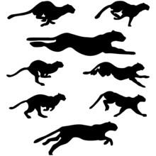 Pumas Silhouettes Set
