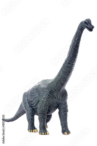 dinosaur isolated on white