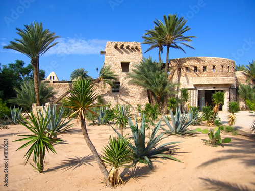 Crocodale farm on Djerba (Tunisia)