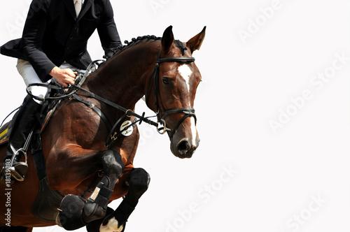 Reitsport, Pferdesport, Reiten, Springreiten, Hürdenspringen