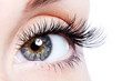 Leinwanddruck Bild - Beauty female eye with curl long false eyelashes