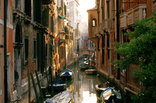 Street View Of Venice