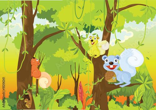 animals #18206261