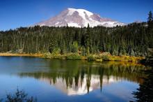 Mt Rainier With Reflection