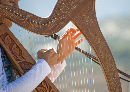 Fotomural Harp being played bay a Woman