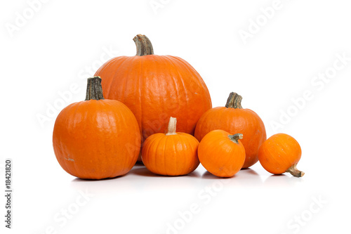 Fotografie, Obraz  Assorted pumpkins with straw on white
