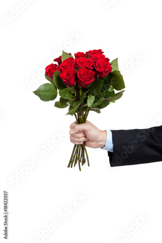 Wall Murals Floral A hand holding a dozen red roses on white