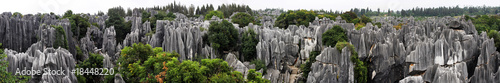Tuinposter China Shilin Stone Forest