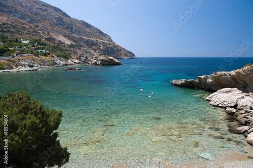 Tuinposter Olijf greek sea
