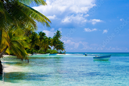 Foto-Leinwand - Green palms on a white sand beach